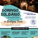dom_solidario2